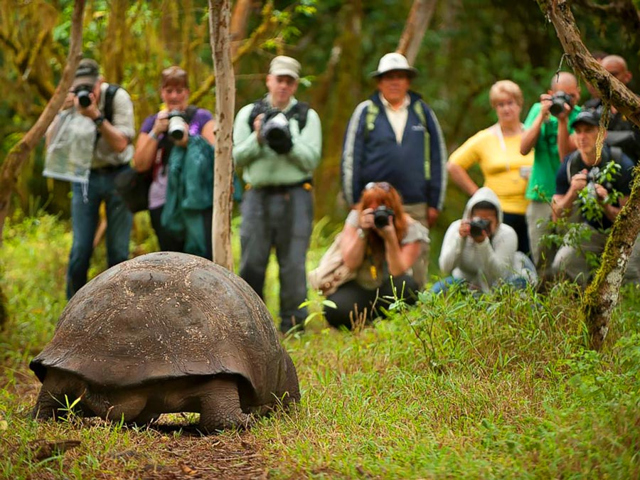 galapagos people and turtle 2
