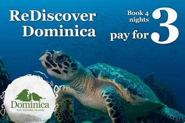 rediscover dominica specials tile